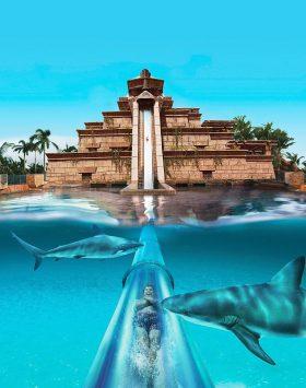 Aqua Venture and Lost Chamber