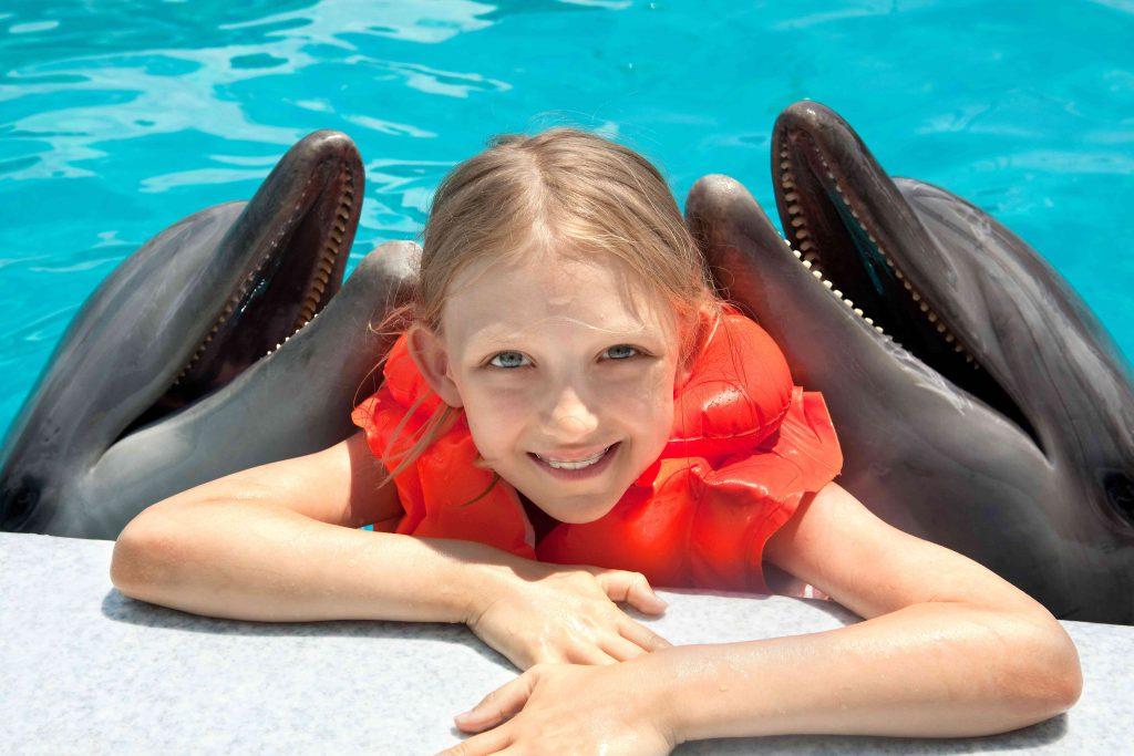 Swim With Dolphin